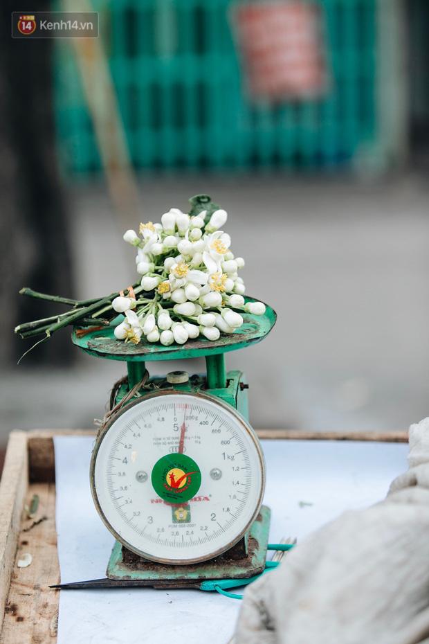 Hoa bưởi tháng 2 theo gió xuống phố Hà Nội, giá lên đến 300.000 đồng/kg vẫn cháy hàng - Ảnh 5.