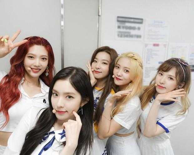 GDA Nhật 2019: BLACKPINK trắng tay, Red Velvet mất giải tân binh, TWICE và BTS thắng đậm - Ảnh 1.