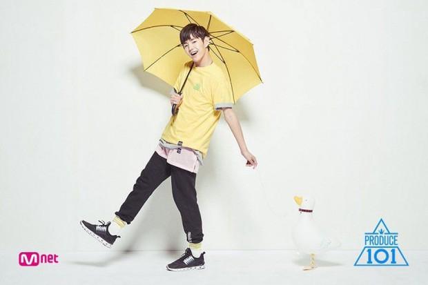 Thí sinh từng bị tố gian lận tại Produce 101 2017 quyết định trở lại phục thù ở mùa 4 - Ảnh 3.