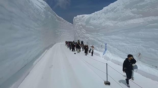 Tuyết phủ cao tới 17m, thung lũng quanh co ở Nhật được mệnh danh là The Wall đời thực - Ảnh 9.