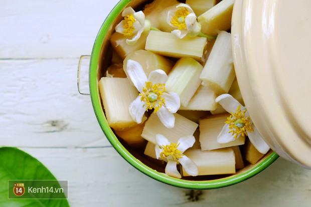 Người Hà Nội ăn uống thấy cưng, cứ tháng ba về là nhặt hoa ướp đủ thứ - Ảnh 4.