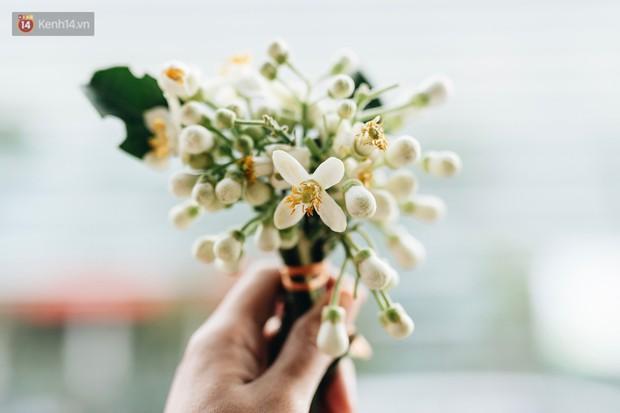 Người Hà Nội ăn uống thấy cưng, cứ tháng ba về là nhặt hoa ướp đủ thứ - Ảnh 2.