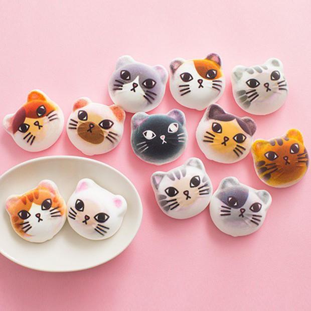 Đội quân kẹo dẻo mặt chó Shiba gây sốt thị trường Nhật, dễ thương quá chỉ ngắm chứ không ăn! - Ảnh 1.