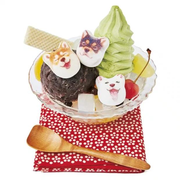 Đội quân kẹo dẻo mặt chó Shiba gây sốt thị trường Nhật, dễ thương quá chỉ ngắm chứ không ăn! - Ảnh 7.