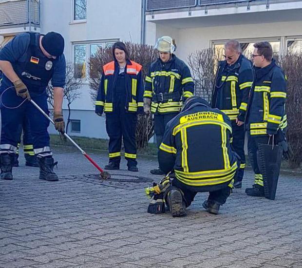 7 nhân viên cứu hộ tụ tập giải cứu con chuột vì nó béo quá không chui được vào cống - Ảnh 4.