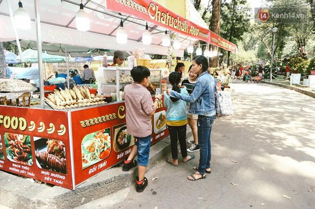 Người Sài Gòn xúng xính áo mới, dạo đường Nguyễn Huệ và hội hoa xuân Tao Đàn chiều 29 Tết Kỷ Hợi - Ảnh 9.