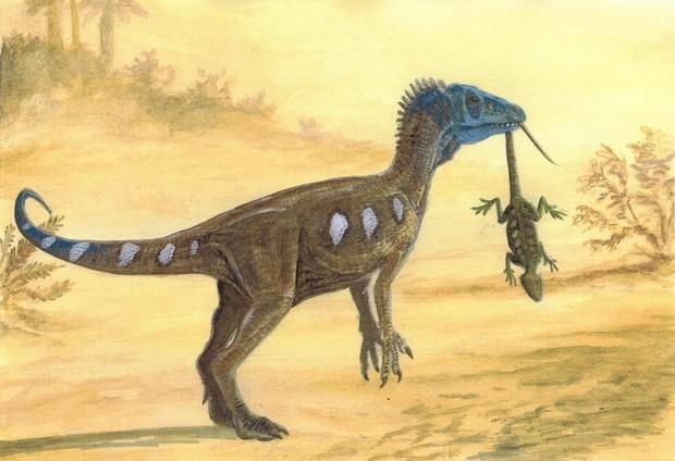 Hành trình xâm chiếm thế giới đầy bất ngờ của loài khủng long: Lên voi xuống chó và kết thúc ở một nơi đầy bất ngờ - Ảnh 1.