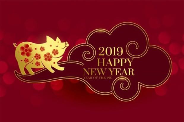 Năm Kỷ Hợi 2019 theo quan niệm của người châu Á - Ảnh 1.