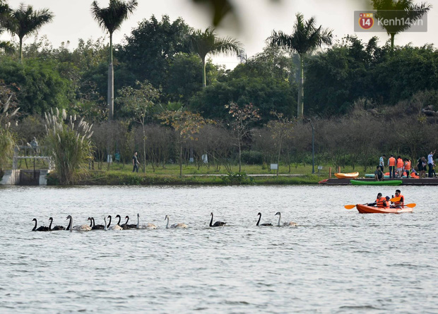 Du khách nườm nượp đổ về các khu vui chơi ở Hà Nội để xin chữ và chụp ảnh dịp Têt Kỷ Hợi 2019 - Ảnh 17.
