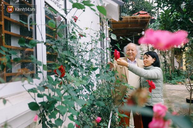 Cái Tết thứ 11 đầm ấm của cặp vợ chồng ông cháu lệch nhau hơn 50 tuổi ở Hà Nội: Tôi thích lan và anh ấy trồng cả vườn hoa lan sau nhà - Ảnh 1.