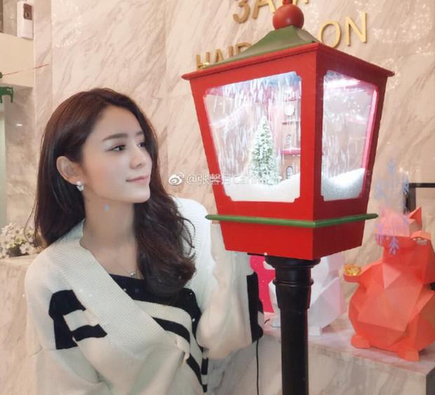 Lâm Phong về quê bạn gái kém 11 tuổi ra mắt họ hàng, rộ nghi vấn chuẩn bị làm đám cưới trong năm Kỷ Hợi - Ảnh 8.