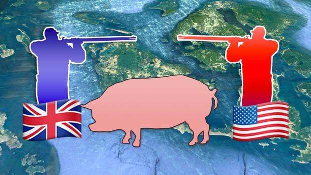 Câu chuyện về War Pig và Pig War: từ những con lợn quật ngã cả voi, đến nguy cơ gây đại chiến giữa 2 cường quốc - Ảnh 5.