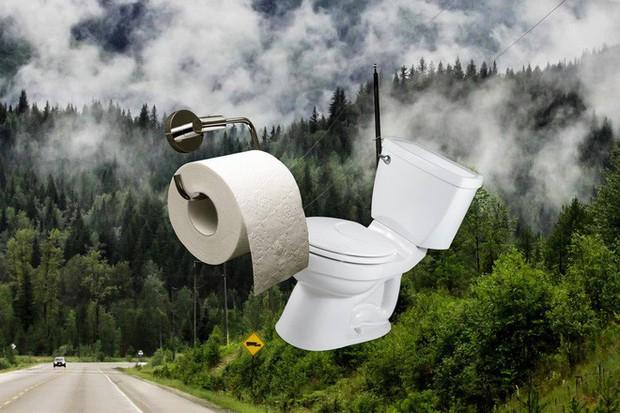 Lượng giấy vệ sinh người Mỹ dùng trong 1 năm bằng cả cánh rừng Canada - Ảnh 1.