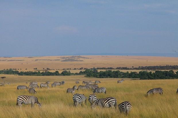 Choáng với hành trình 10 ngày rong ruổi Kenya - châu Phi với toàn những trải nghiệm có 1-0-2: Ai mê khám phá nhất định không được bỏ qua! - Ảnh 18.