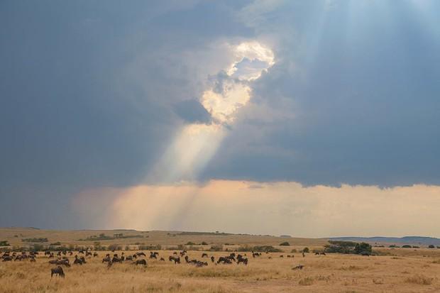 Choáng với hành trình 10 ngày rong ruổi Kenya - châu Phi với toàn những trải nghiệm có 1-0-2: Ai mê khám phá nhất định không được bỏ qua! - Ảnh 26.