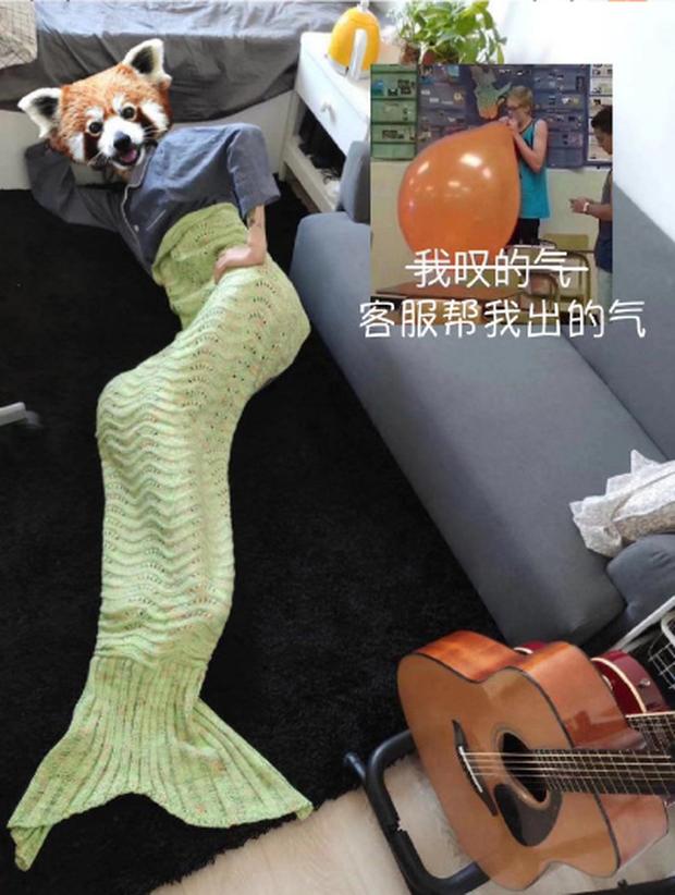 """Chàng trai mua chăn đuôi cá về đắp, tuyên bố với bạn gái mình là """"con của biển"""" nên không có chân... làm việc nhà! - Ảnh 1."""