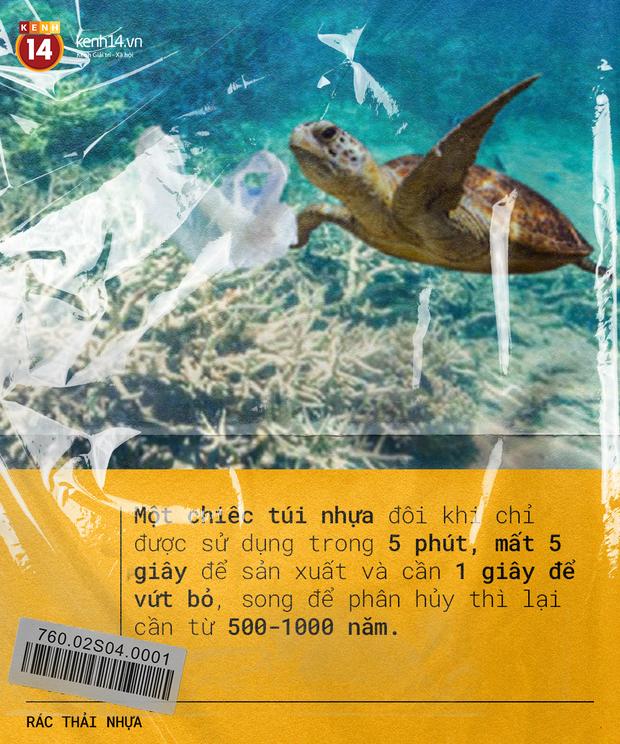 Rác thải nhựa: Thứ chúng ta chỉ dùng vài phút ngắn ngủi nhưng lại là bi kịch nghìn năm của mọi sinh vật biển - Ảnh 15.