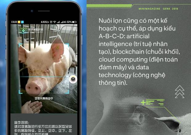 Trung Quốc chống lại dịch tả lợn châu Phi bằng công nghệ nhận diện mặt lợn như thế nào? - Ảnh 4.