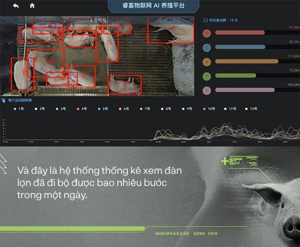 Trung Quốc chống lại dịch tả lợn châu Phi bằng công nghệ nhận diện mặt lợn như thế nào? - Ảnh 7.
