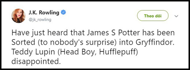 Fan Harry Potter nổi nóng vì lâu lâu J. K. Rowling lại hé lộ một chi tiết chẳng ai mong muốn - Ảnh 3.