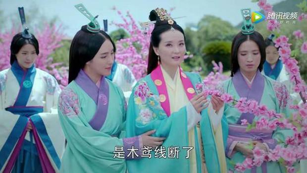 Nhìn nước bạn dồn dập drama, fan Hoa Ngữ kiếm chuyện đi so cảnh đẻ của Triệu Lệ Dĩnh và Vương Diễm - Ảnh 4.