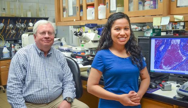 Ung thư vú: nghiên cứu cho thấy tăng cường ăn cá biển có thể giúp giảm phát triển khối u đến 50% - Ảnh 3.