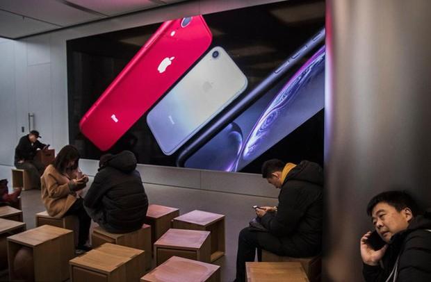 Chuyên gia nhận định sai lầm trong chiến lược kinh doanh của Steve Jobs dành cho Apple, đã đến lúc CEO Tim Cook phải sửa sai - Ảnh 2.