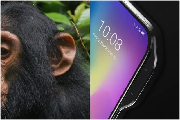 """Apple có """"tai thỏ"""", còn hãng Trung Quốc này lại thích làm smartphone """"tai khỉ"""" mới chất - Ảnh 2."""