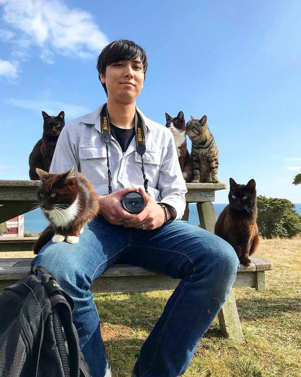 Đến thăm đảo mèo lớn nhất Nhật Bản, hội con sen đến đây thì đảm bảo sướng phát ngất! - Ảnh 9.