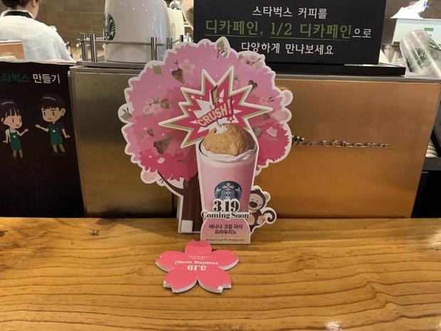 Starbucks Hàn Quốc vừa ra sản phẩm mới toanh, fan nào nhìn cũng mê mệt vì quá hấp dẫn - Ảnh 1.