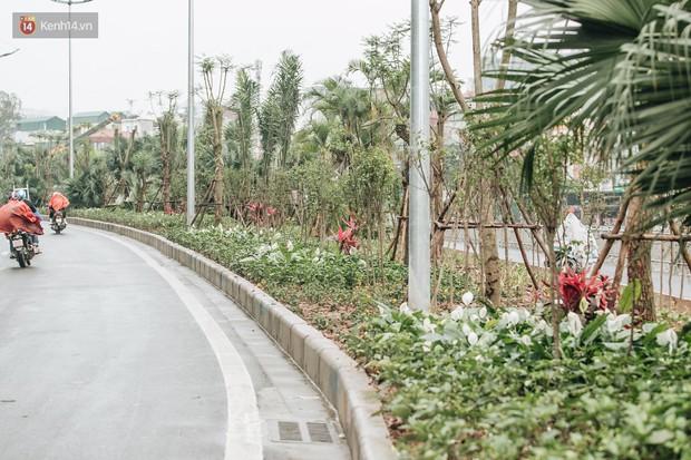 Đường đi bộ ven sông Tô Lịch: Xe máy phi ầm ầm dù có biển cấm, xe đạp vượt 3 hàng rào sắt trong ức chế - Ảnh 13.
