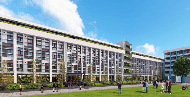 Trường Đại học Công nghiệp Thực phẩm TP. Hồ Chí Minh: Toàn cảnh tuyển sinh cao đẳng, đại học năm 2019 - Ảnh 5.