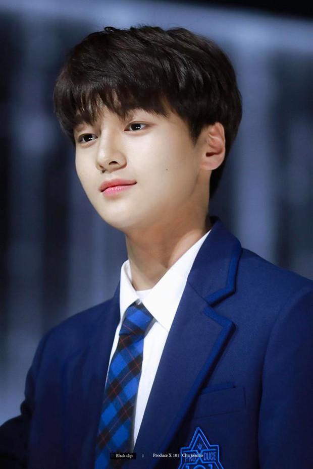 Mỹ nam Produce X 101 gây sốt với ngoại hình là phép cộng của L (Infinite) và Cha Eun Woo (ASTRO) - Ảnh 3.