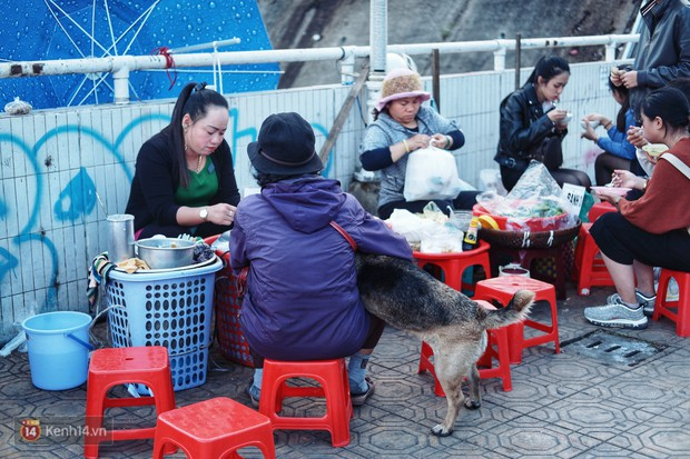 Câu chuyện đáng yêu của người phụ nữ bán vé số và chú chó lang thang ở Đà Lạt - Ảnh 2.