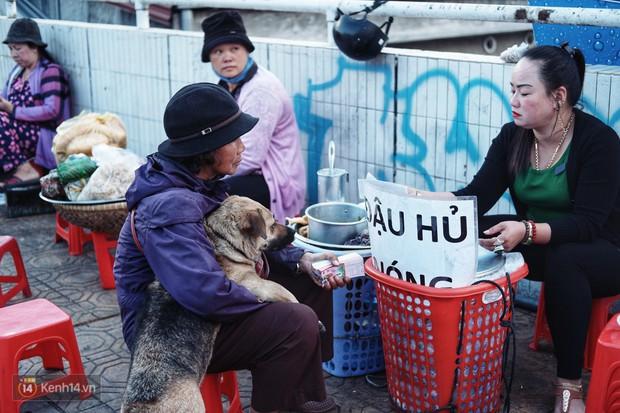 Câu chuyện đáng yêu của người phụ nữ bán vé số và chú chó lang thang ở Đà Lạt - Ảnh 6.