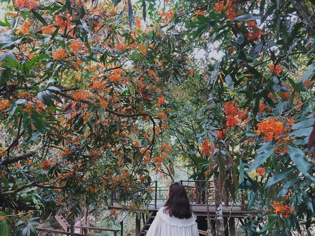 Phải một lần đến Quảng Bình để biết thiên nhiên Việt Nam đẹp xuất sắc thế nào! - Ảnh 11.