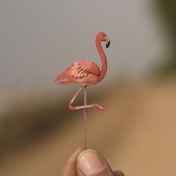 Kinh ngạc trước loạt chim bé bằng móng tay nhưng thông điệp mà chúng truyền tải mới là điều ý nghĩa - Ảnh 3.