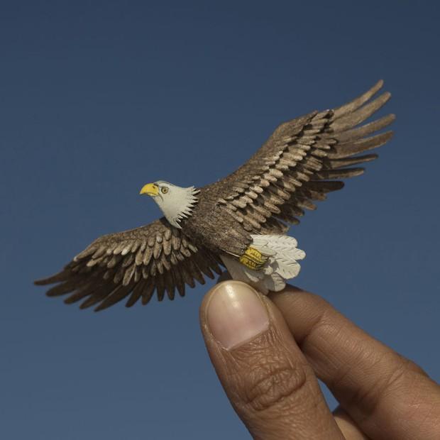 Kinh ngạc trước loạt chim bé bằng móng tay nhưng thông điệp mà chúng truyền tải mới là điều ý nghĩa - Ảnh 9.