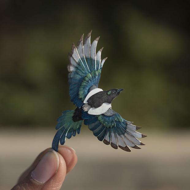 Kinh ngạc trước loạt chim bé bằng móng tay nhưng thông điệp mà chúng truyền tải mới là điều ý nghĩa - Ảnh 13.