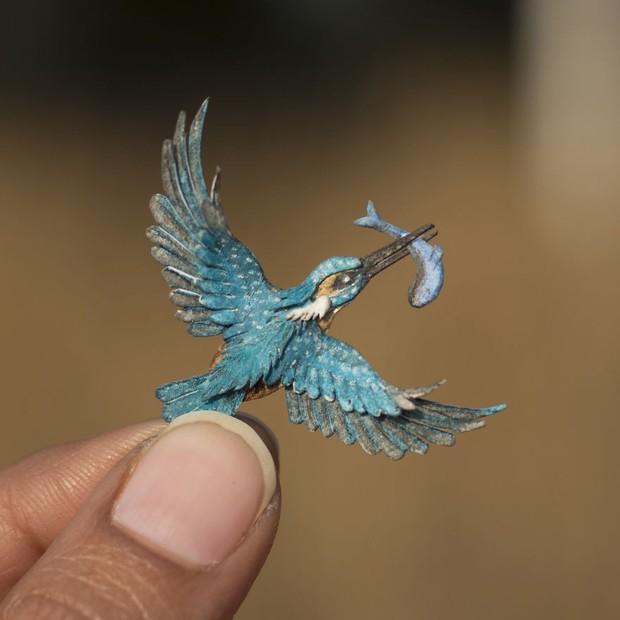 Kinh ngạc trước loạt chim bé bằng móng tay nhưng thông điệp mà chúng truyền tải mới là điều ý nghĩa - Ảnh 14.