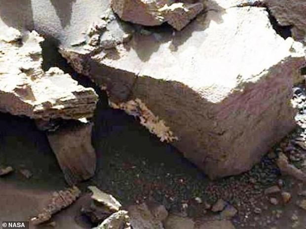 Tiết lộ chấn động về sự sống trên sao Hỏa: Tảo, địa y và nấm đang phát triển trên hành tinh này? - Ảnh 2.