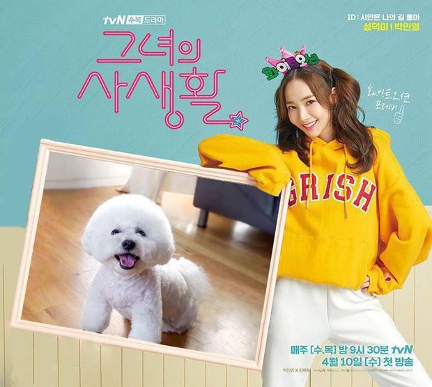 5 lí do ai nấy hóng cực độ phim Her Private Life của Park Min Young - Ảnh 5.