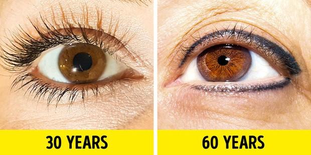 Bạn sẽ không nghĩ mình đã già đi khi gặp phải hàng loạt dấu hiệu lão hóa sau - Ảnh 3.