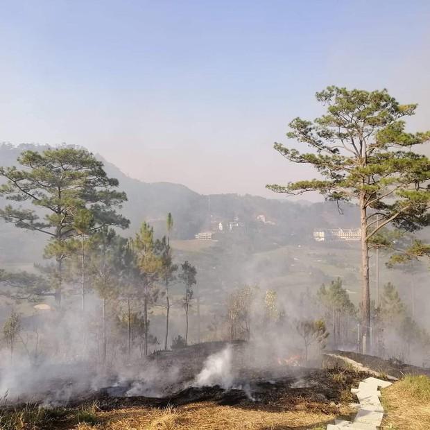 Homestay nổi tiếng nhất nhì ở Đà Lạt bị cháy lớn, cư dân mạng nhìn hình đã thấy hoang mang  - Ảnh 5.