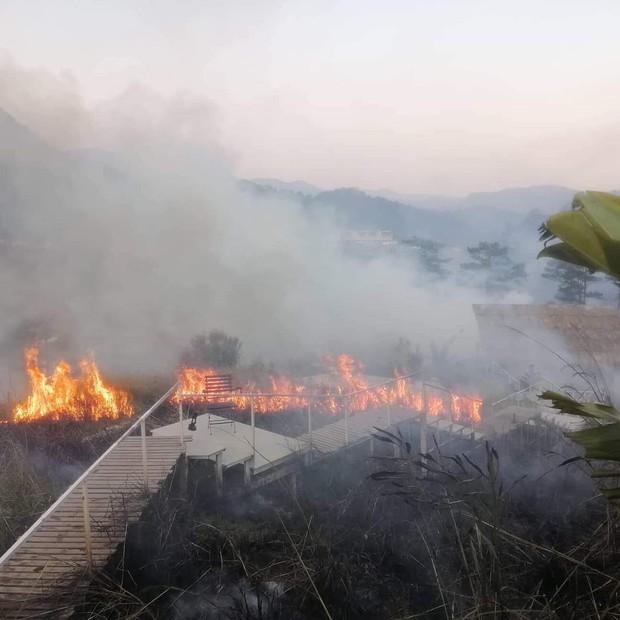 Homestay nổi tiếng nhất nhì ở Đà Lạt bị cháy lớn, cư dân mạng nhìn hình đã thấy hoang mang  - Ảnh 2.