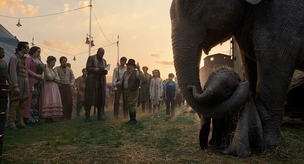 """""""Dumbo"""" bản remake: Tưởng nguy hiểm nhưng dài dòng, nhàm chán - Ảnh 5."""
