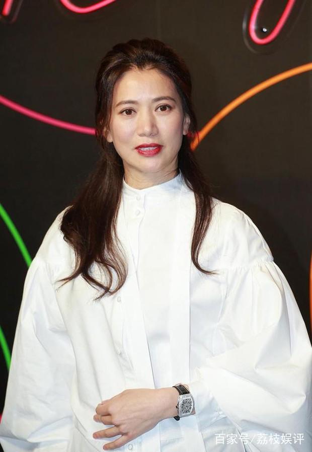 Hoa hậu Hong Kong Viên Vịnh Nghi giữ trọn nét thanh xuân, nhan sắc không một nếp nhăn ở tuổi U50 - Ảnh 9.