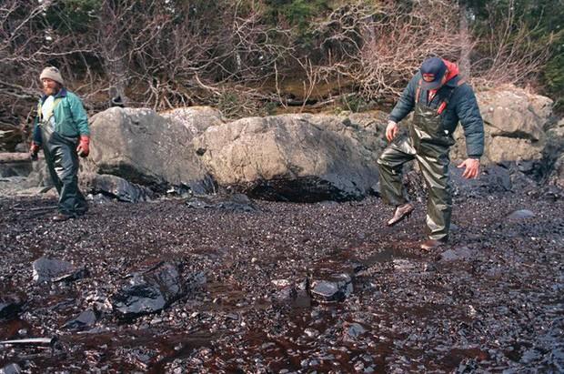 Sau 30 năm, những bức ảnh từ thảm họa tràn dầu Exxon Valdez vẫn còn gây ám ảnh - Ảnh 21.