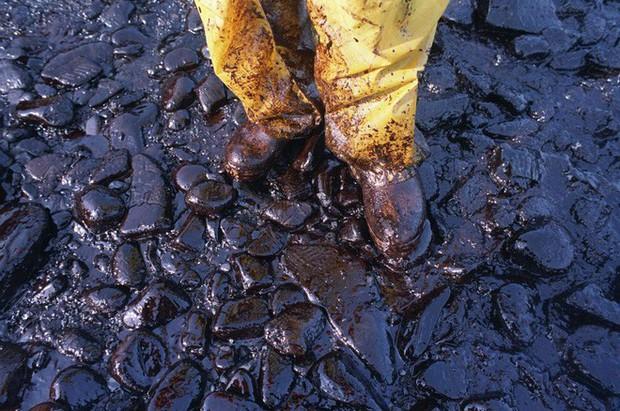 Sau 30 năm, những bức ảnh từ thảm họa tràn dầu Exxon Valdez vẫn còn gây ám ảnh - Ảnh 9.