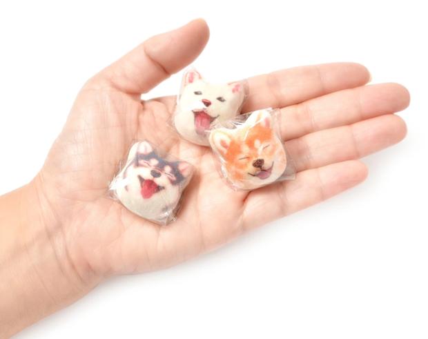 Góc dành cho boss yêu cún: viên kẹo hình chó Shiba mặt hớn đang khiến nhiều người mê mẩn - Ảnh 1.